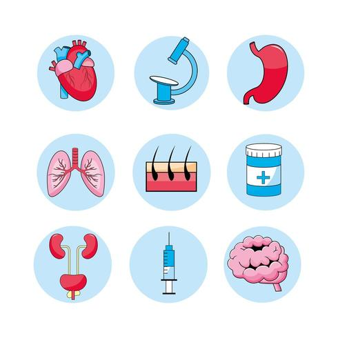 set of medical consultation, treatment, diagnosis and illness icons vector