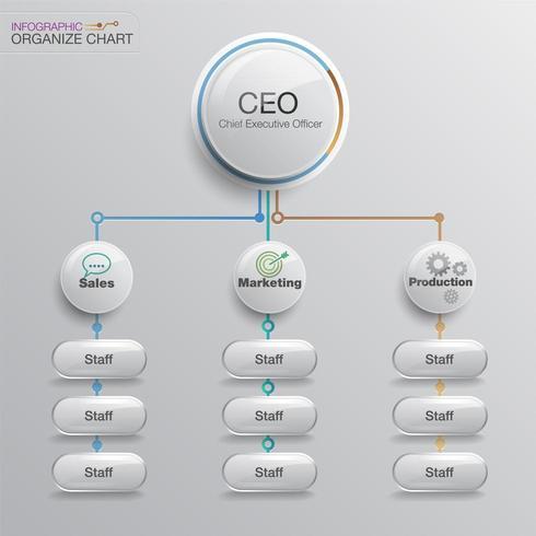 Bedrijfsstructuur organigram