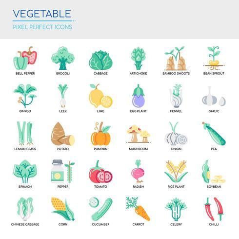 Conjunto de vegetais linha fina e ícones perfeitos de pixel para qualquer projeto web e app.