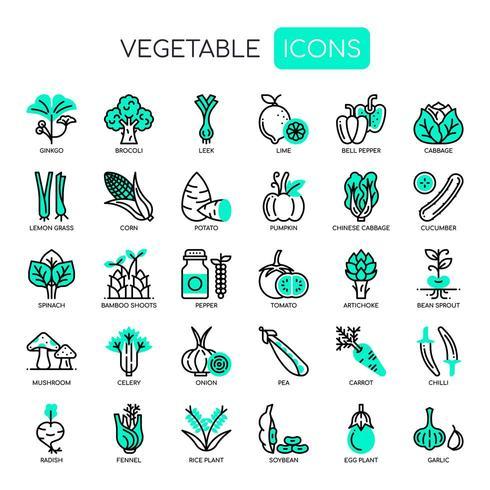 Uppsättning av tunna linjer och pixlar med perfekta ikoner för alla webb- och appprojekt. vektor
