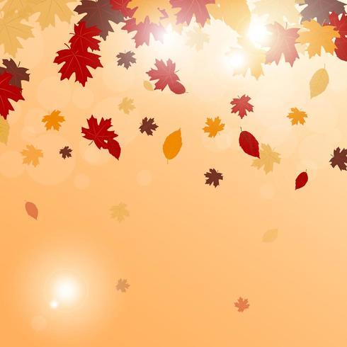 Hojas de otoño cayendo vector