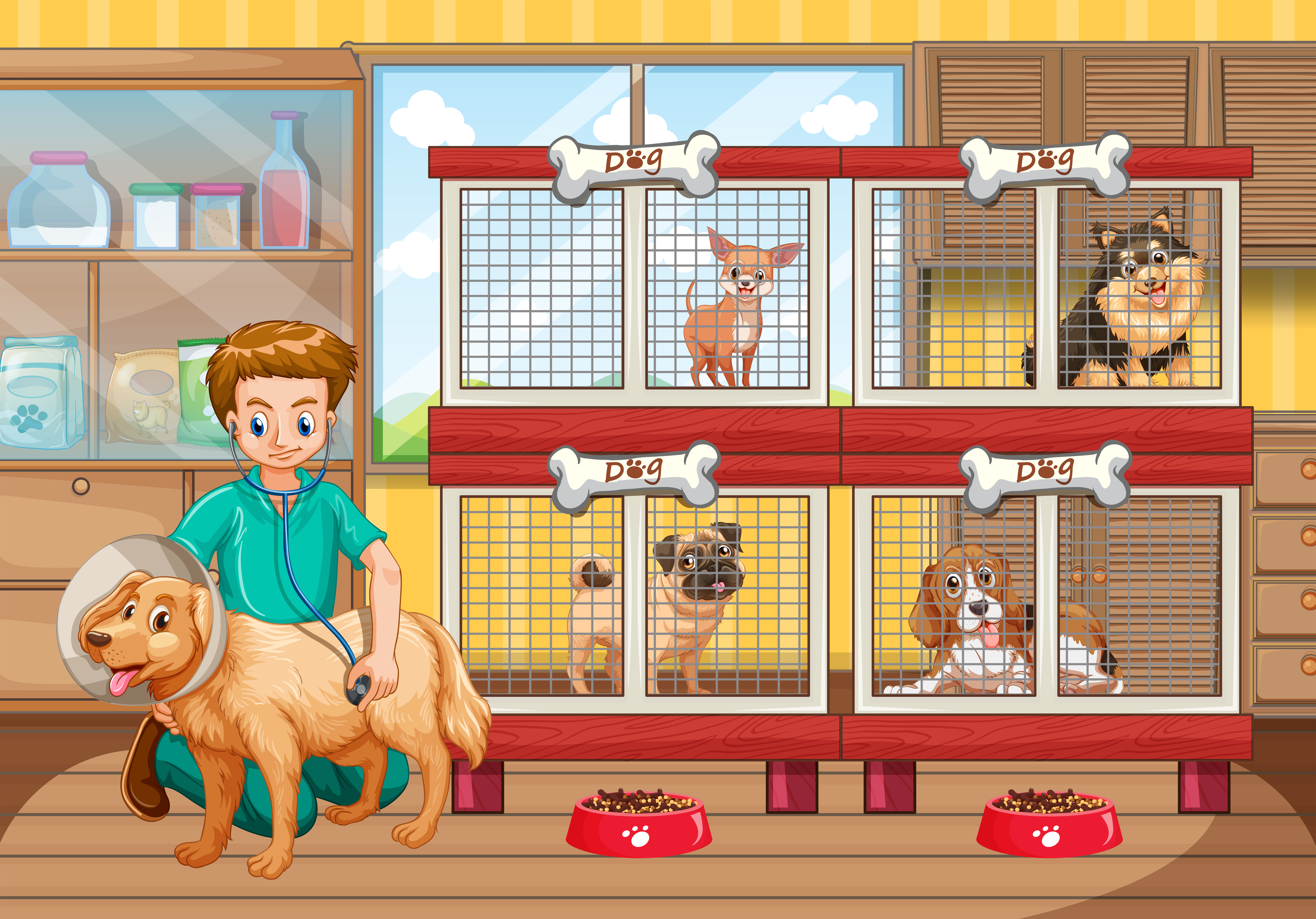 Vet Checking Up Many Dogs In Hospital 682849 Vector Art At Vecteezy