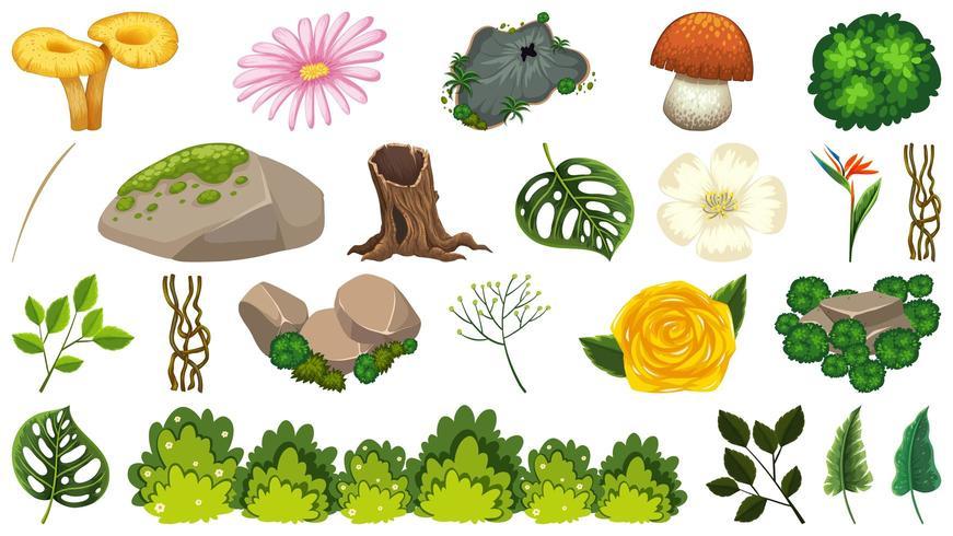 Set van sierplanten