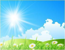 Cartoon field with flowers and bright sun