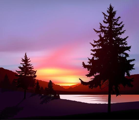 Aurora boreal en estado salvaje