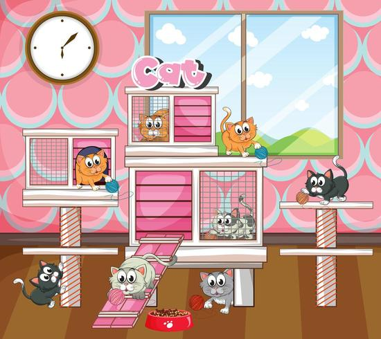 Cats in big cage indoor