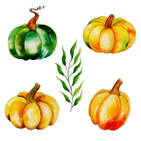 Coleção de abóboras de outono em aquarela vetor