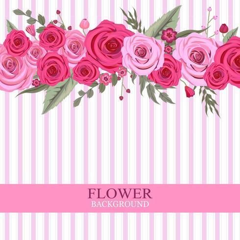 Pink Rose Flower Background vector