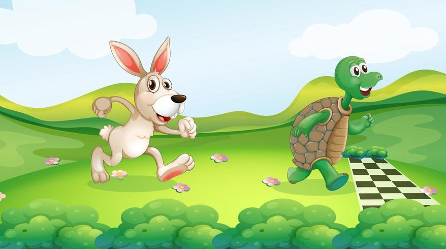 Coelho e tartaruga na corrida vetor