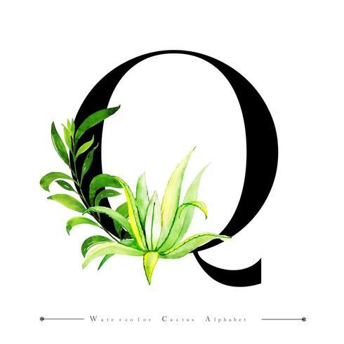 Alphabet-Buchstabe Q mit Aquarellkaktus und -blättern