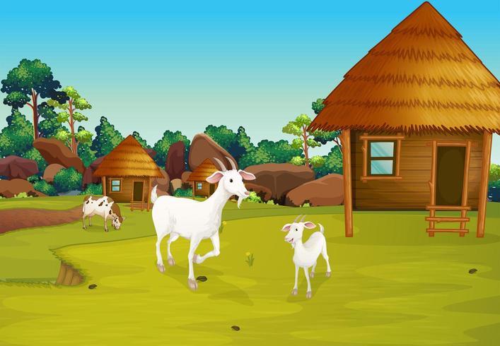 Una fattoria con capanne nipa