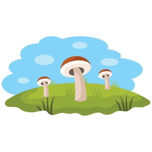 Mushrooms OnThe Grass