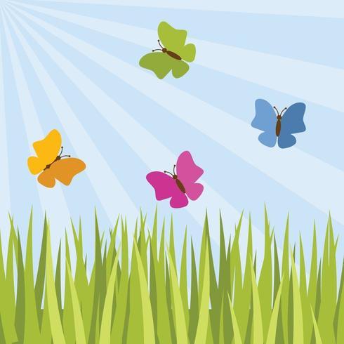 Le farfalle stanno volando
