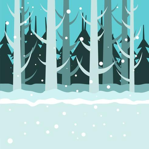 Winter And Snowy Night In The Forest