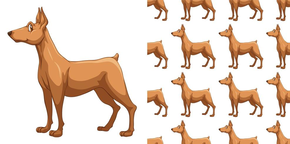 Patrón de perro doberman transparente y aislado vector