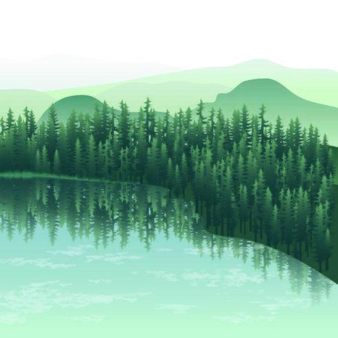 Belo reflexo da selva na água