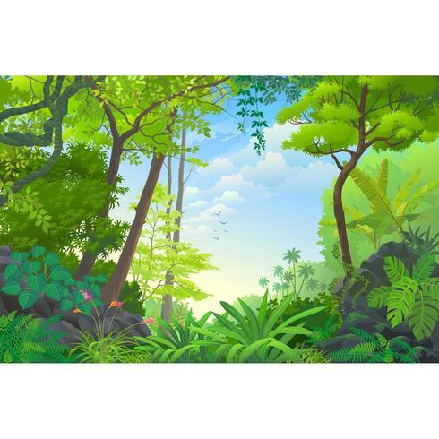 The Beautiful Jungle