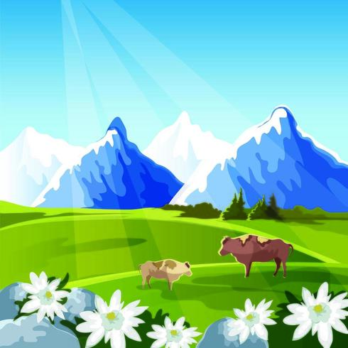 Sunbeam Over The Mountain Cows