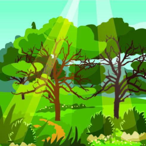 Raio de sol sobre a selva