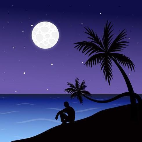 Paisagem por do sol praia
