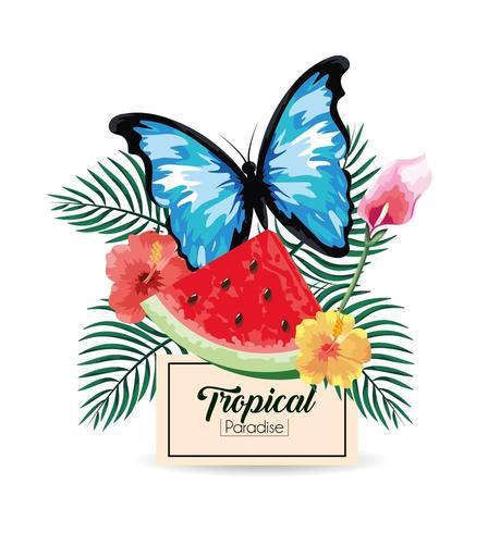 Etikett mit tropischer Wassermelone und Schmetterling mit Pflanzen
