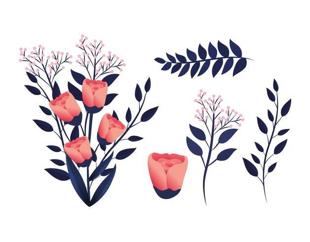 conjunto de flores com pétalas e ramos de folhas