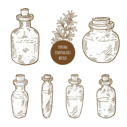 Set of vintage hand drawn essential oil bottles.