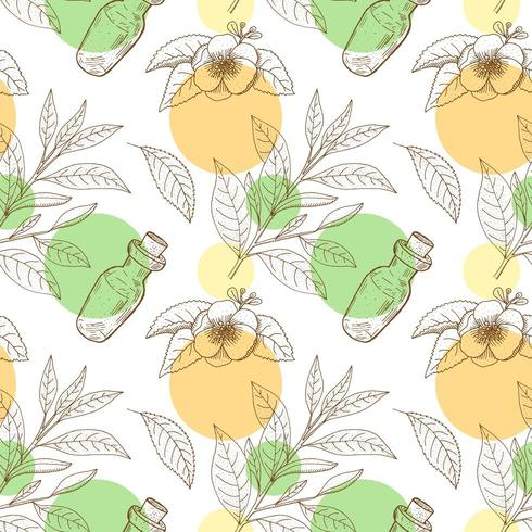 Tea Tree leaves and flowers with bottle. Hand drawn vintage seamless pattern.