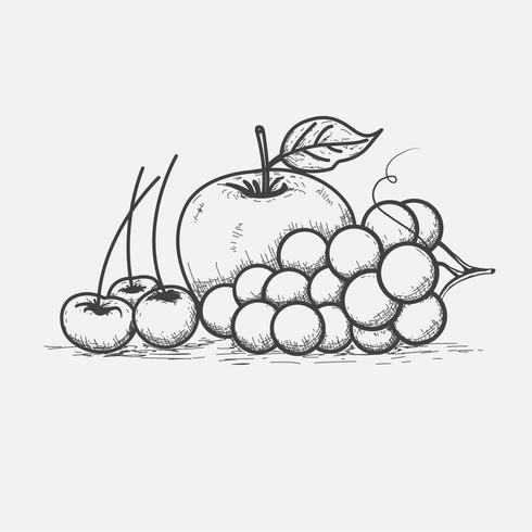 Line art di frutta ciliegia e uva