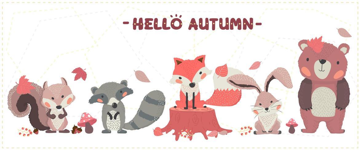 conjunto de raposa, guaxinim, esquilo, coelho e urso de outono bonito floresta animal