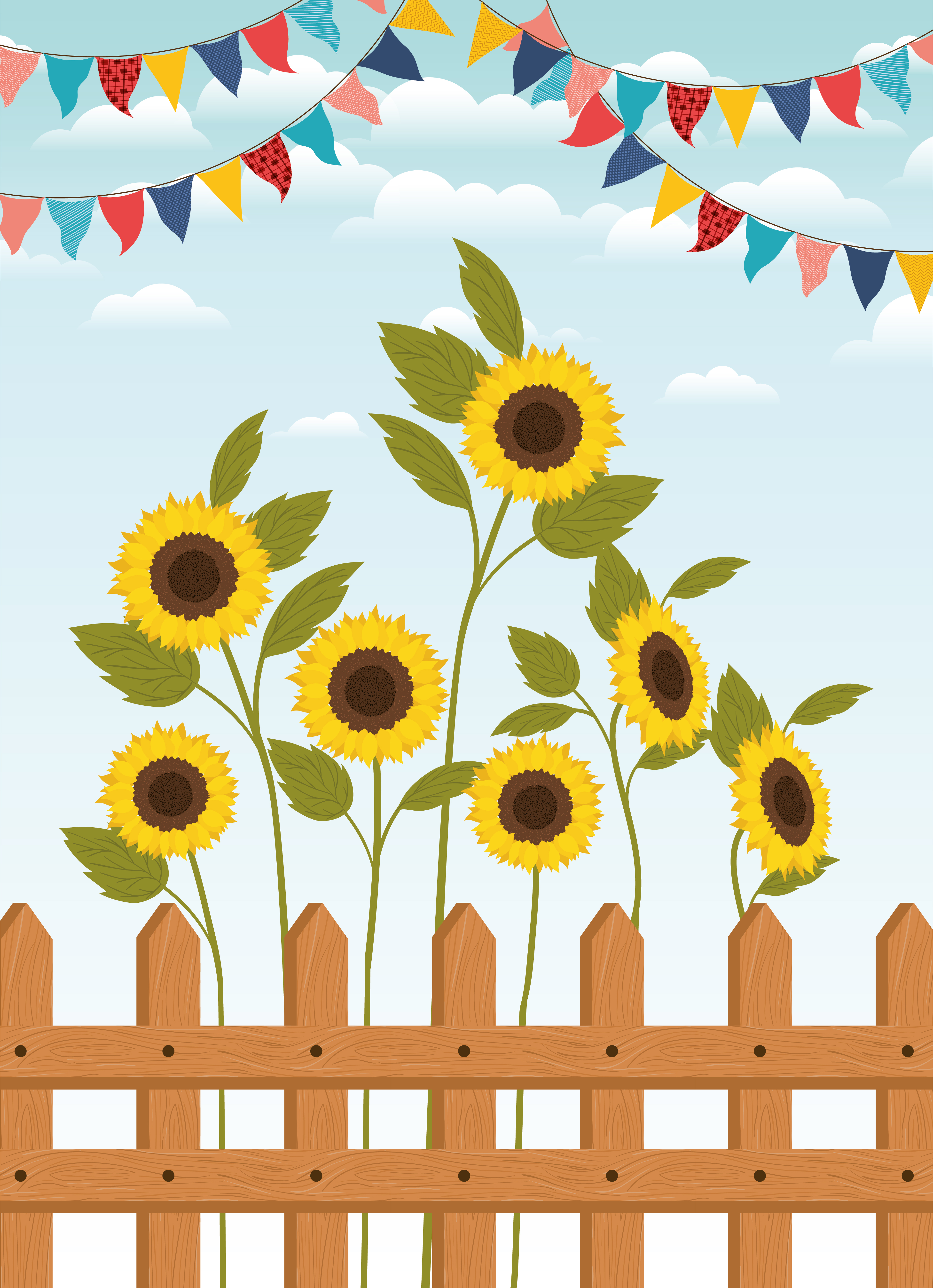 festa junina with fence and sunflowers garden - Download ...
