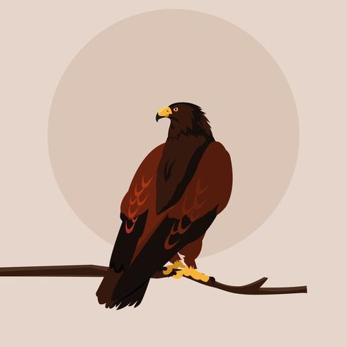 imponente halcón en la rama vector
