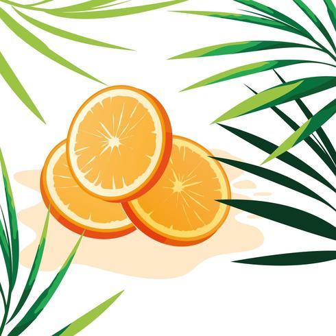 Fetta di illustratio arancio di vettore di progettazione