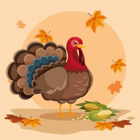turkey with cobs of thanksgiving day vector