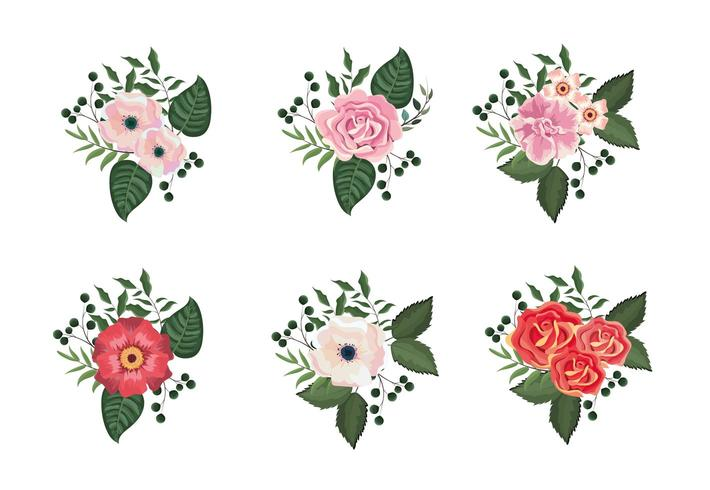 set tropical flowers and roses plants with leaves vector