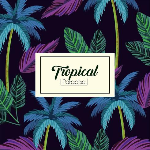 tropical label and leaves plants background