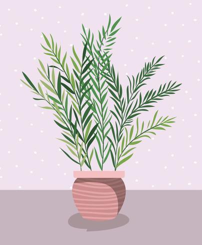 hermosa planta de interior en maceta