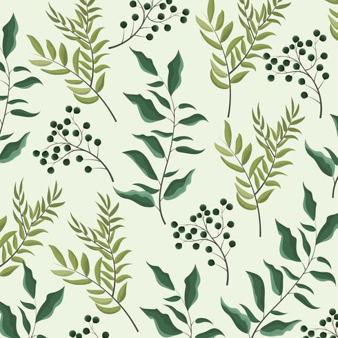 exotic plants and branches leaves background vector