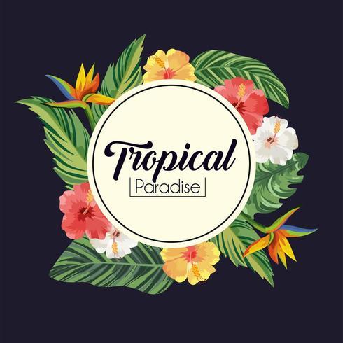 Etikett mit tropischen Blumen, Pflanzen und Blättern
