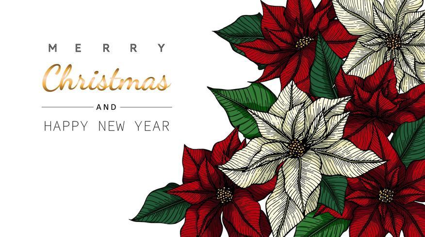 Cadre de coin poinsettia joyeux Noël et nouvel an
