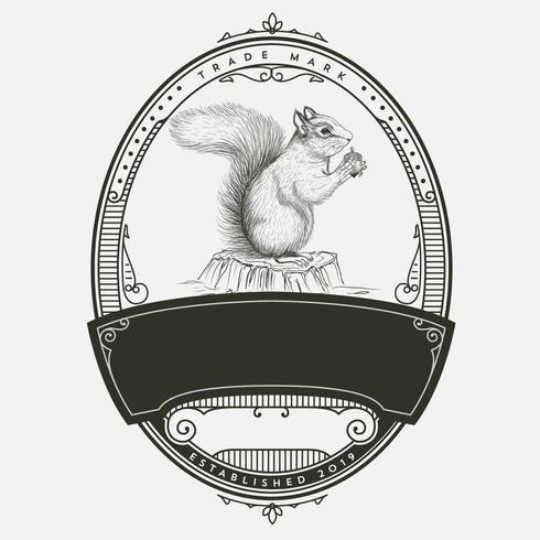 Vintage ekorre badge design vektor
