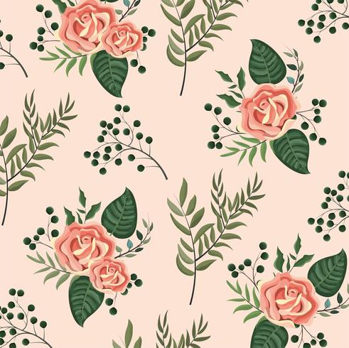roses plants with branches leaves background vector