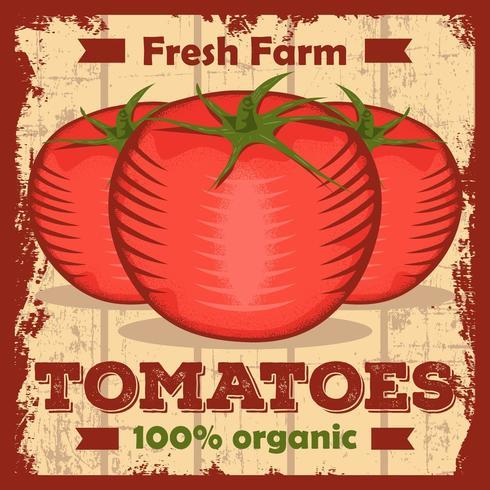 Affiche de signalisation vintage tomates ketchup rustique