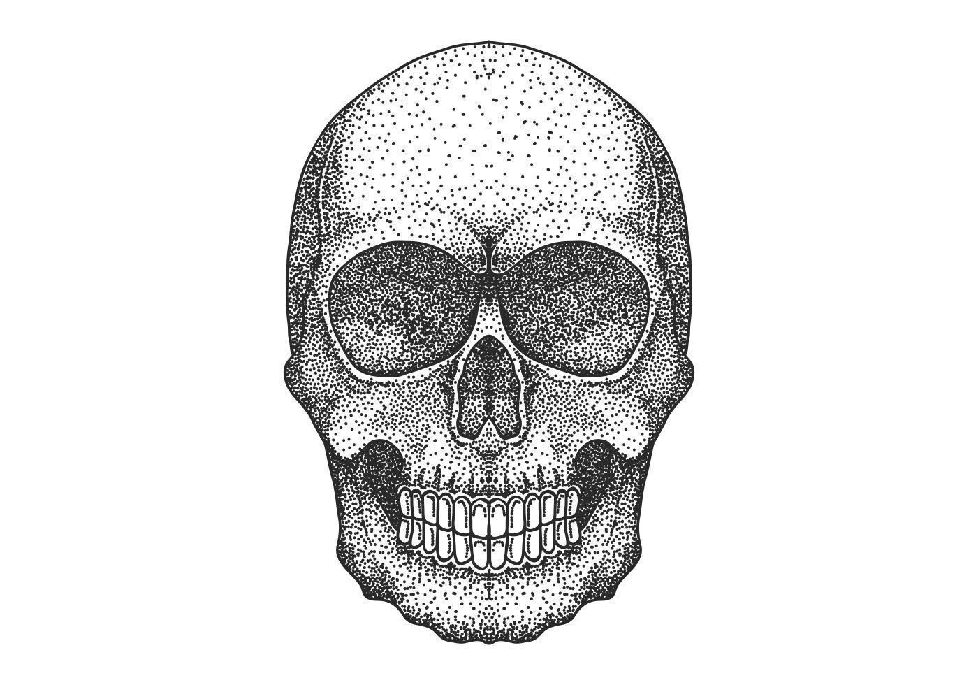 Cranio disegno punto lavoro testa vettore