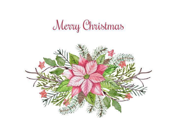 Merry Christmas floral poinsettia arrangement vector