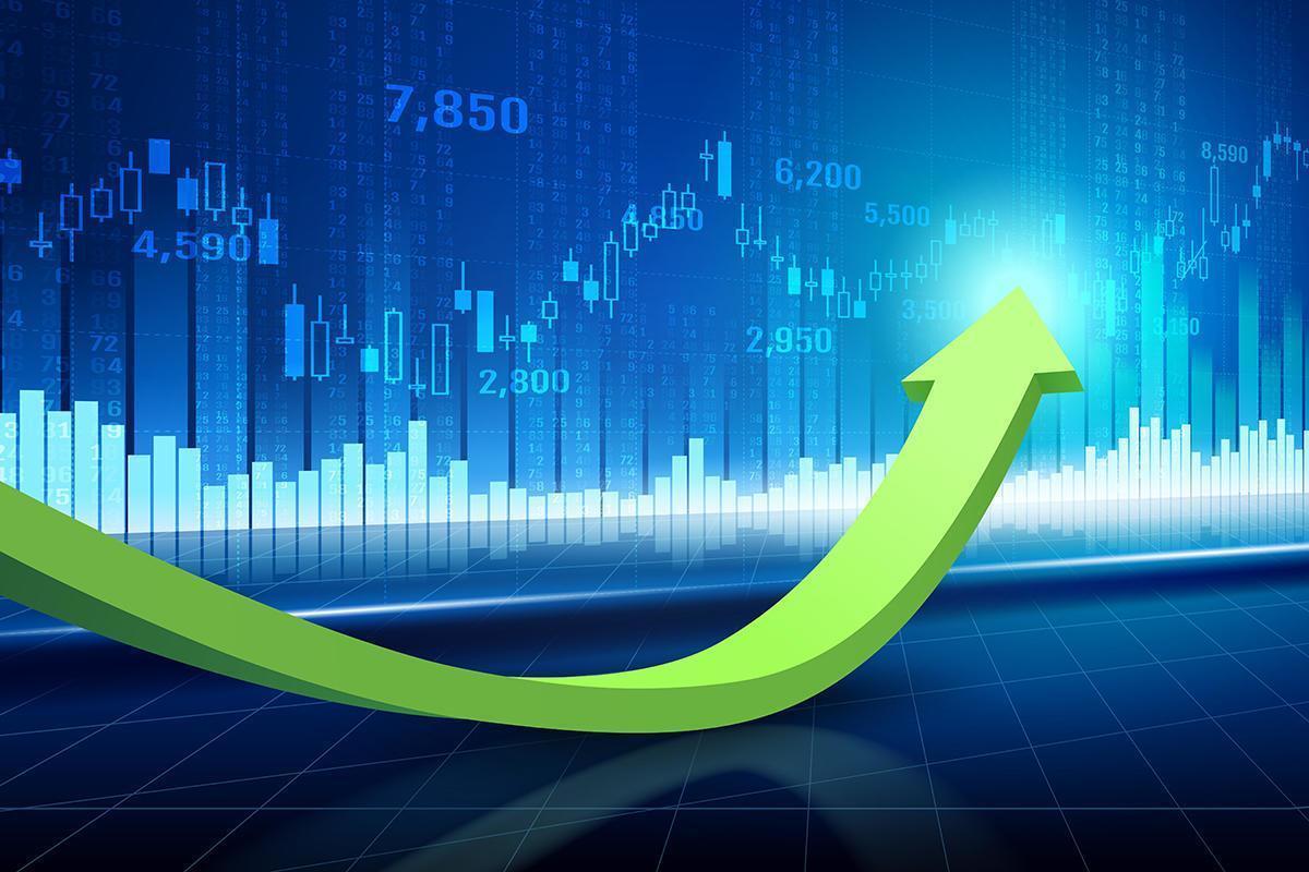 Technical graph of stock market vector