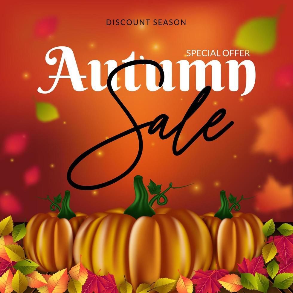 Plantilla de volante de venta otoño con calabazas y hojas vector