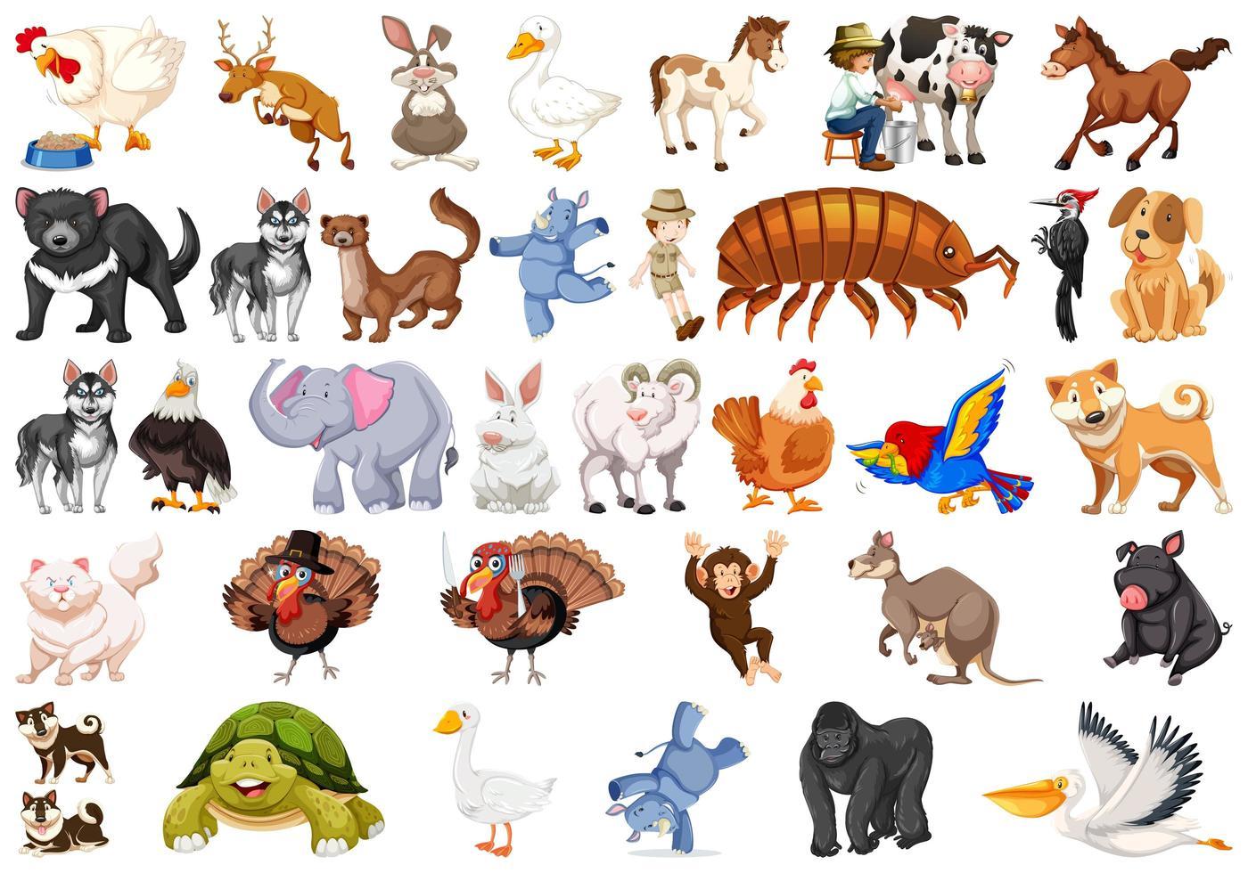 Ensemble d'animaux différents vecteur