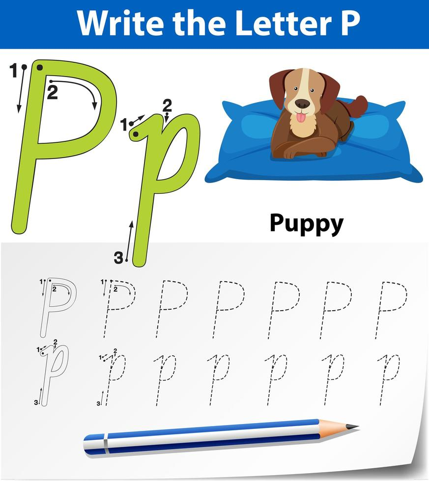 Arbeitsblätter für Buchstaben-P-Tracing-Alphabete vektor