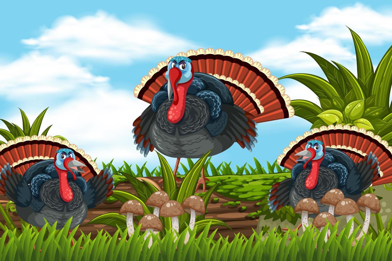 Turkeys in nature scene vector